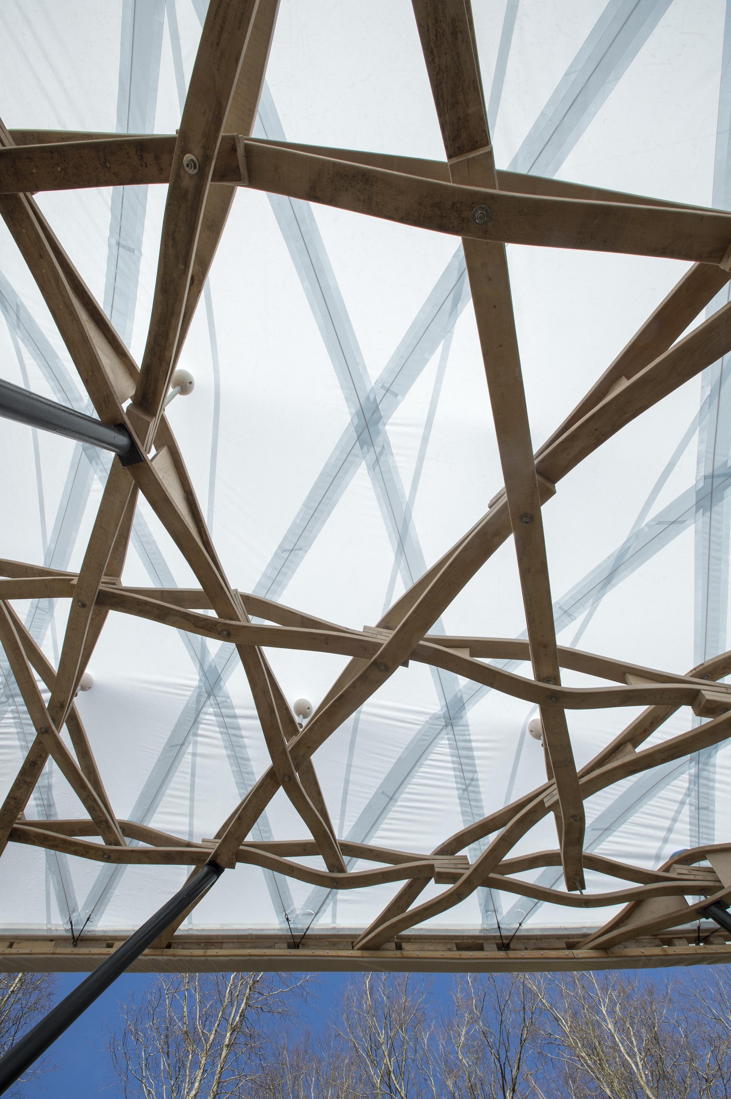 Hooke_Park_Design_&_Make_Timber_Seasoning_Shelter_©Valerie_Bennett_2014_02_22_0011.jpg