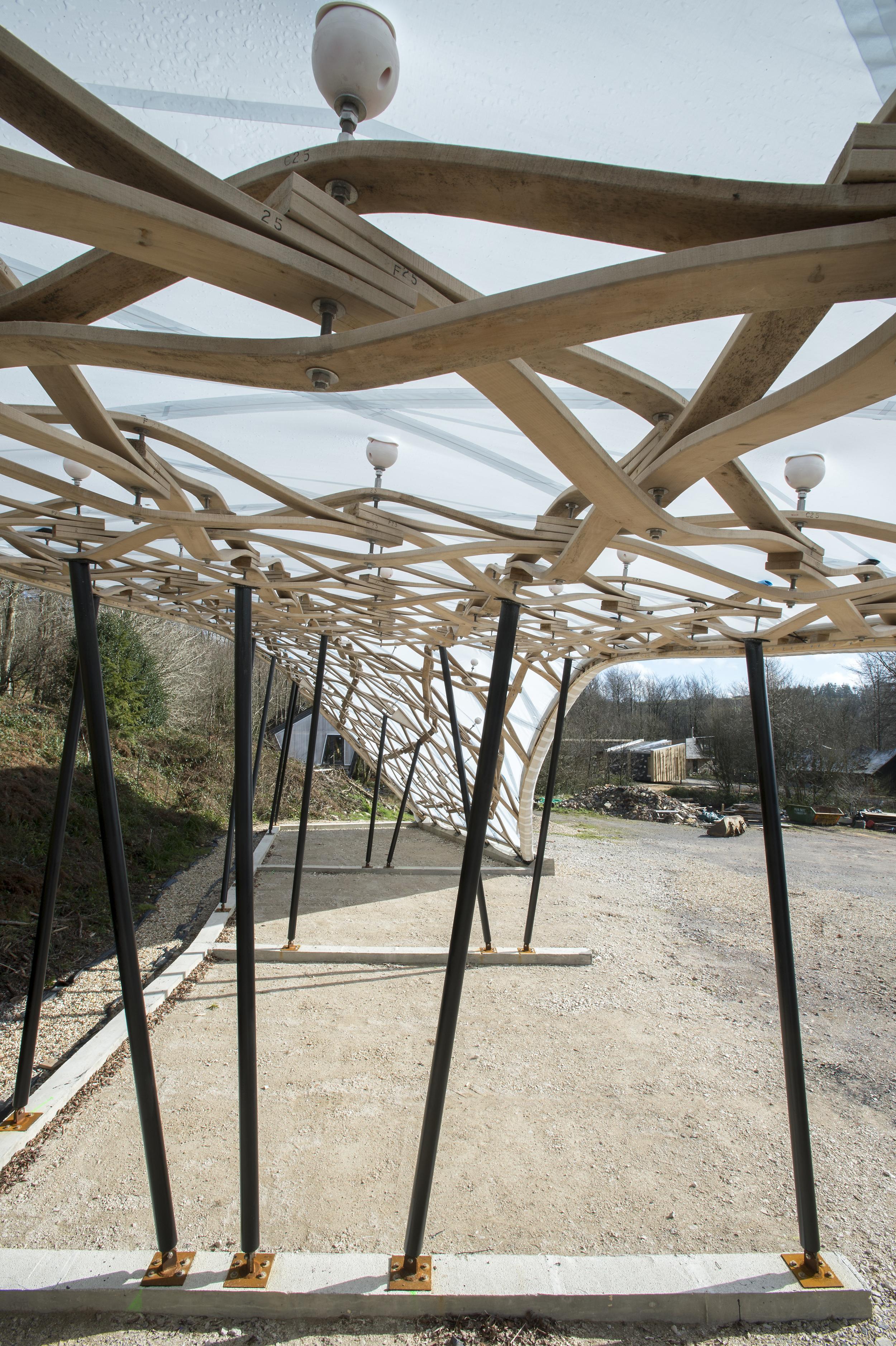 Hooke_Park_Design_&_Make_Timber_Seasoning_Shelter_©Valerie_Bennett_2014_02_22_0126.jpg