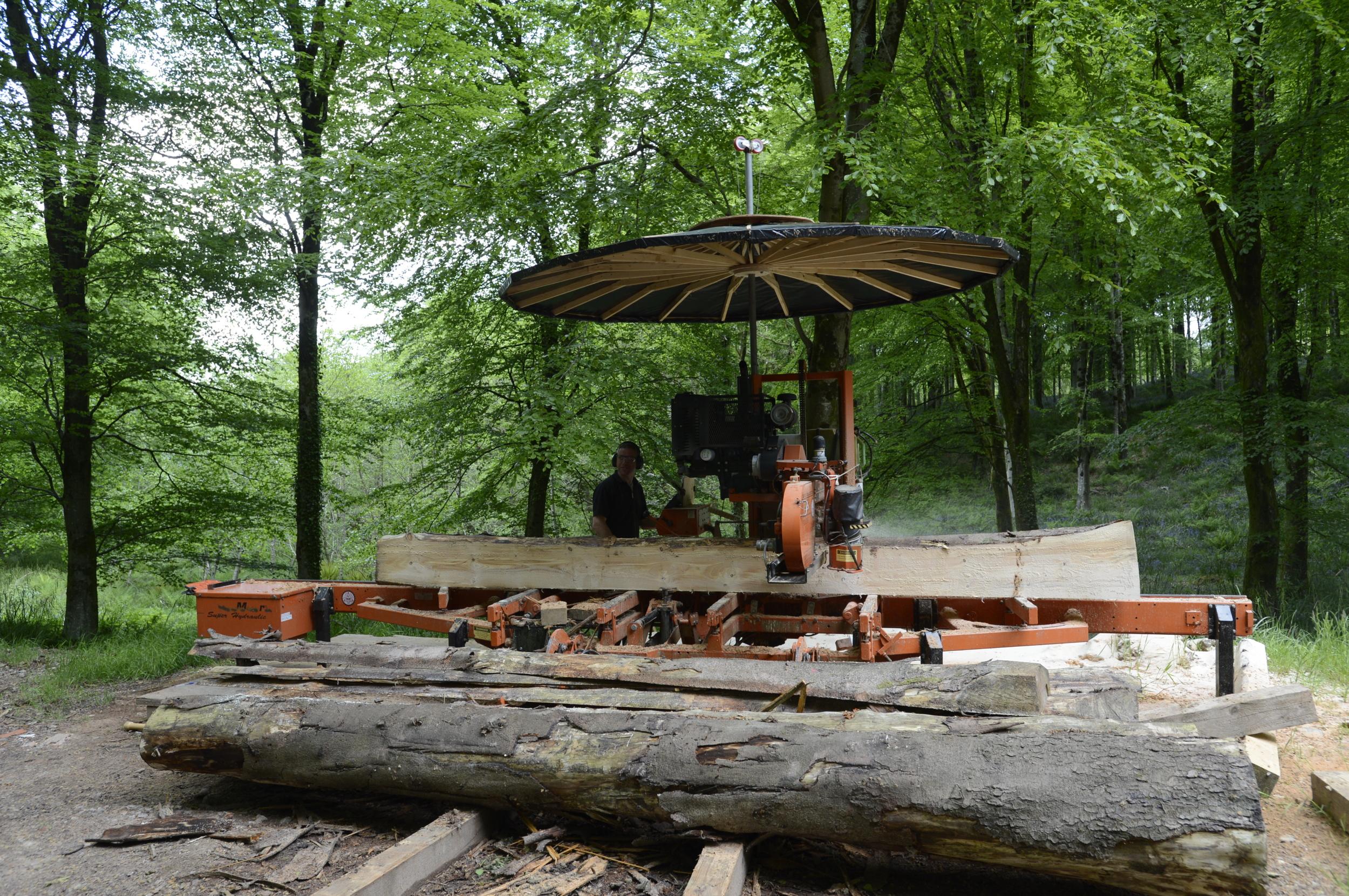 Hooke_Park_Edward_with_customised_Wood_Mizer_VB_2013_06_03_0009.JPG