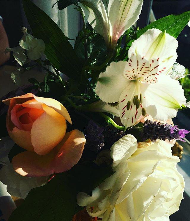 Now wakes the crimson petal, now the white #tennyson #spring #davidaustin #garden