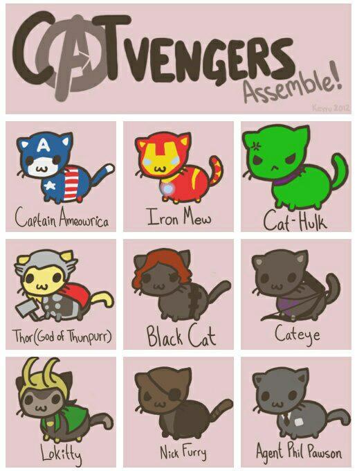 catvengers.jpg