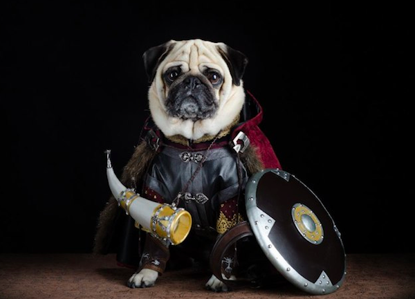 pugs of middle earth 7.png