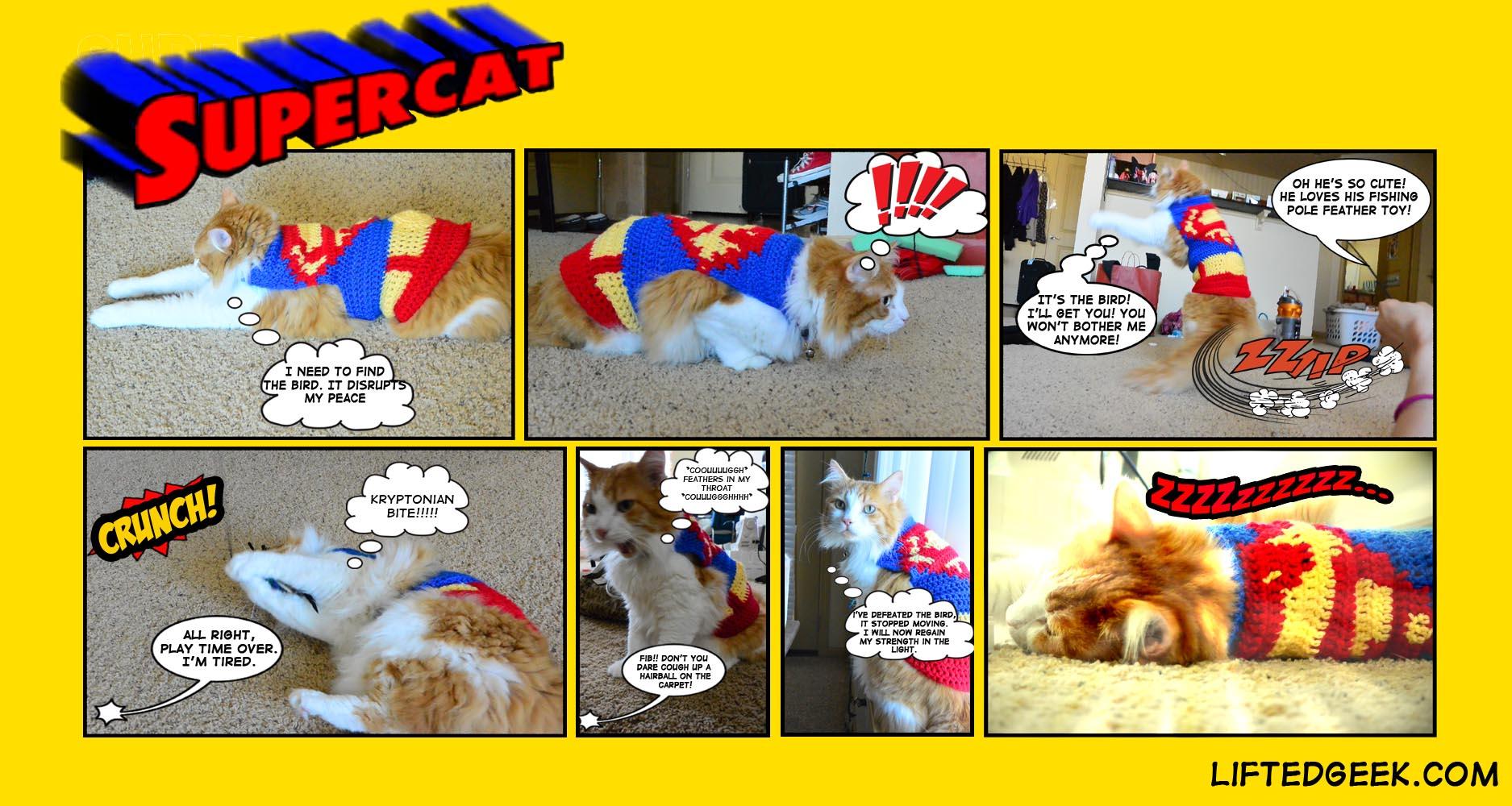 SuperCatcomicstrip copy.jpg