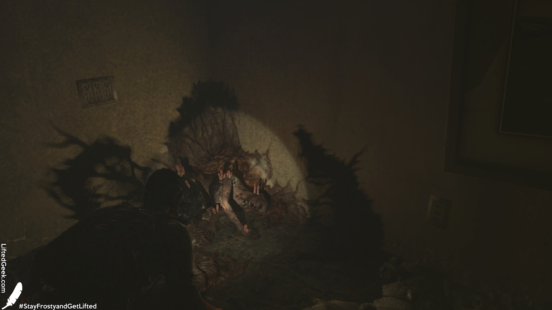 The Last of Us™ Remastered_20140730173741.jpg
