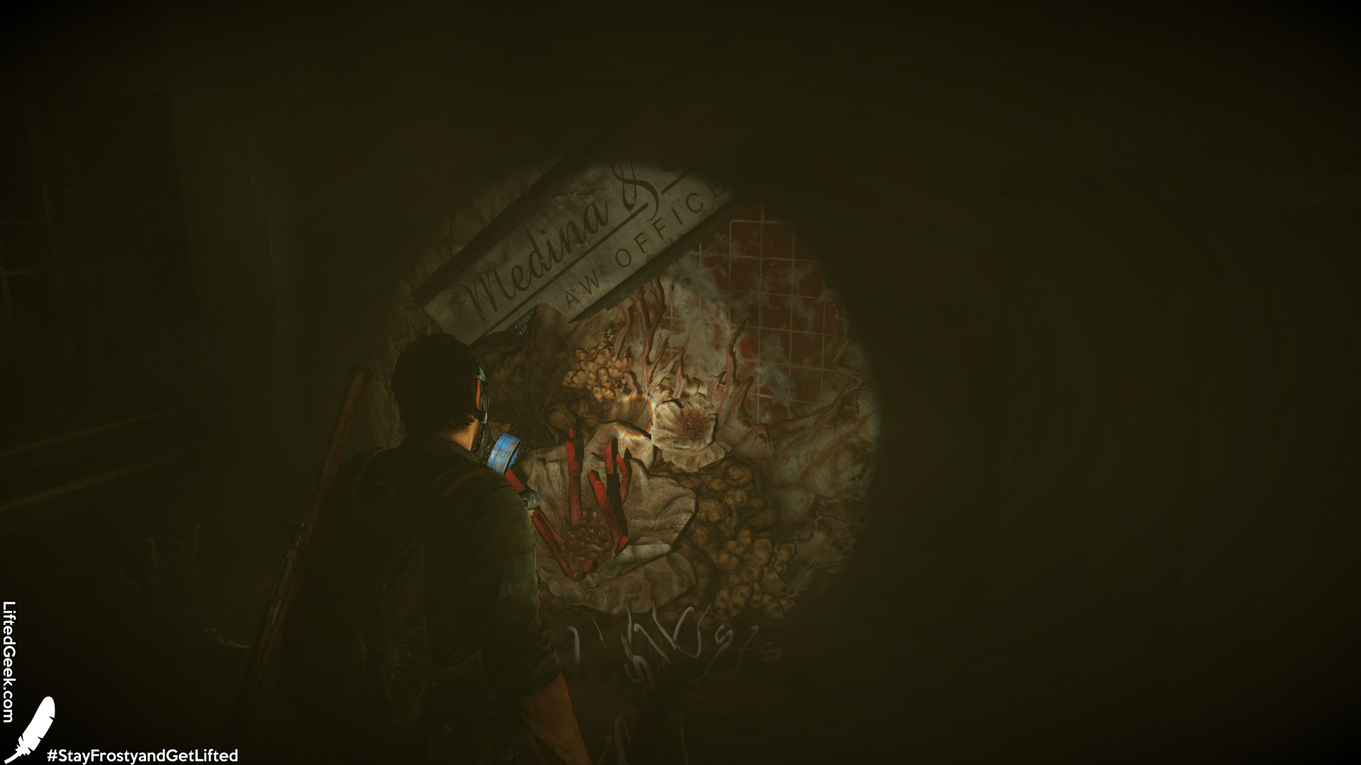 The Last of Us™ Remastered_20140730231944.jpg