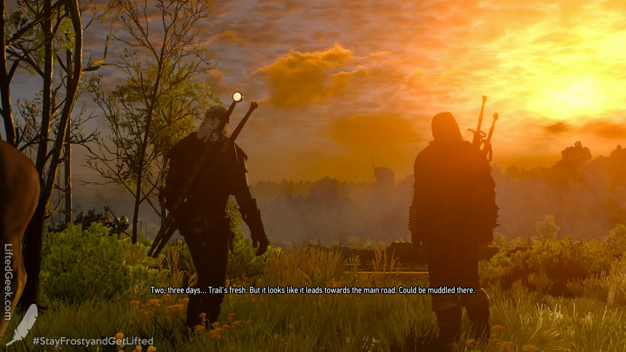 TheWitcher3-WildHunt-12.jpg