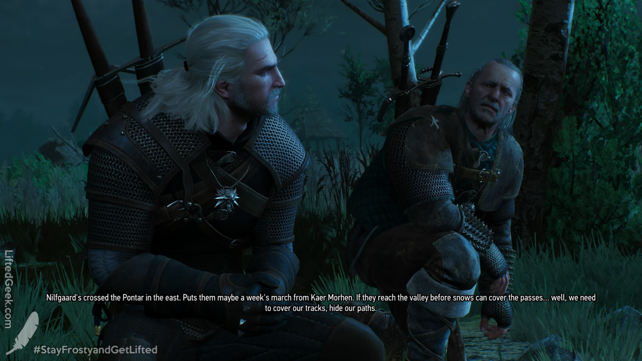 TheWitcher3-WildHunt-16.jpg