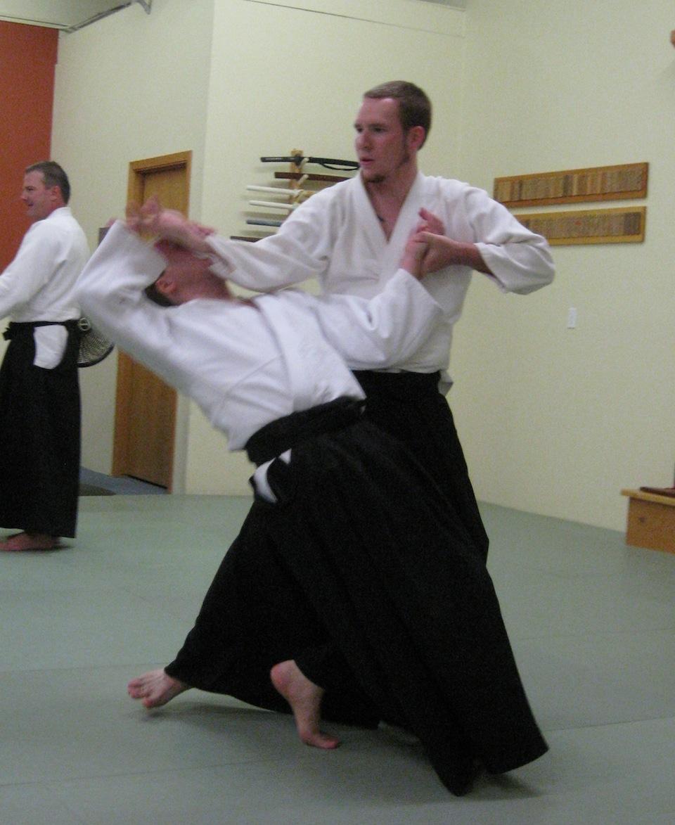aikido summer'13 099 web.jpg