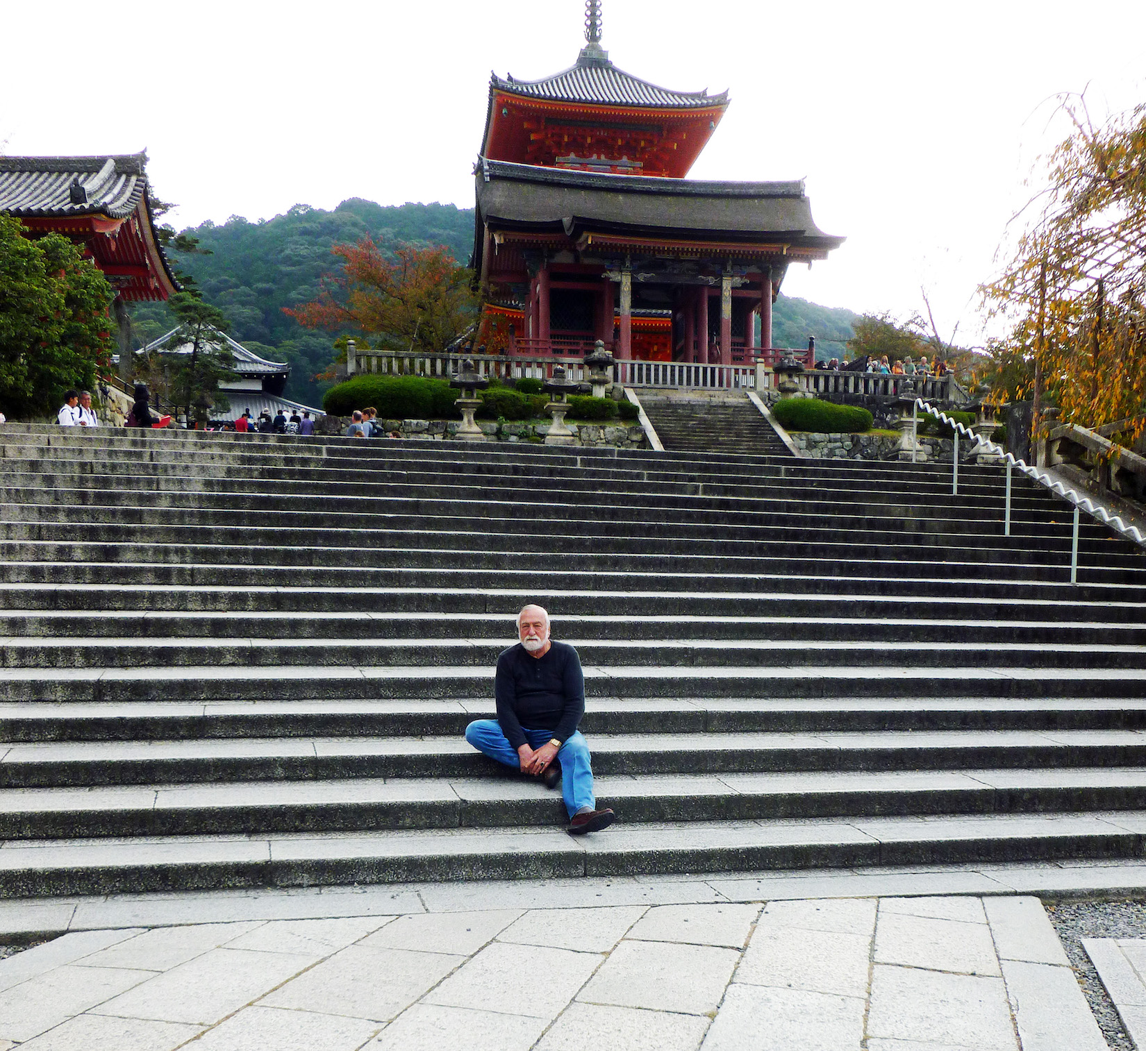Sensei temple website.jpeg