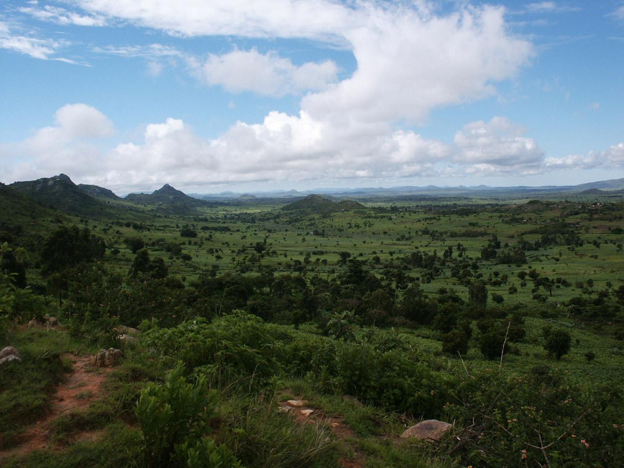 2008 jan bezoek Malawi 093.jpg