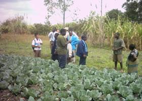 Malawi Working2gether.jpg