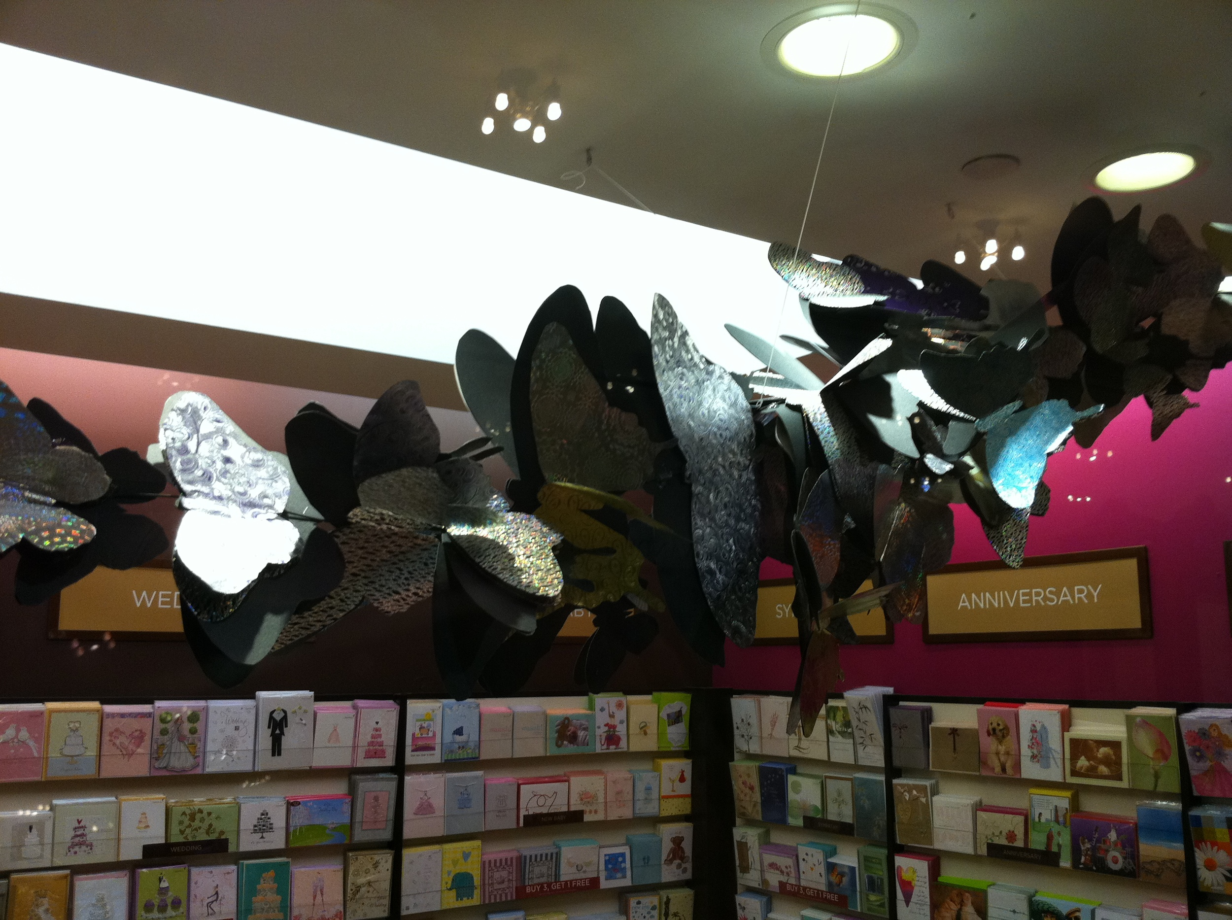 PAPYRUS STORE BUTTERFLY DISPLAY GRAND CENTRAL STATION NEW YORK CITY 3
