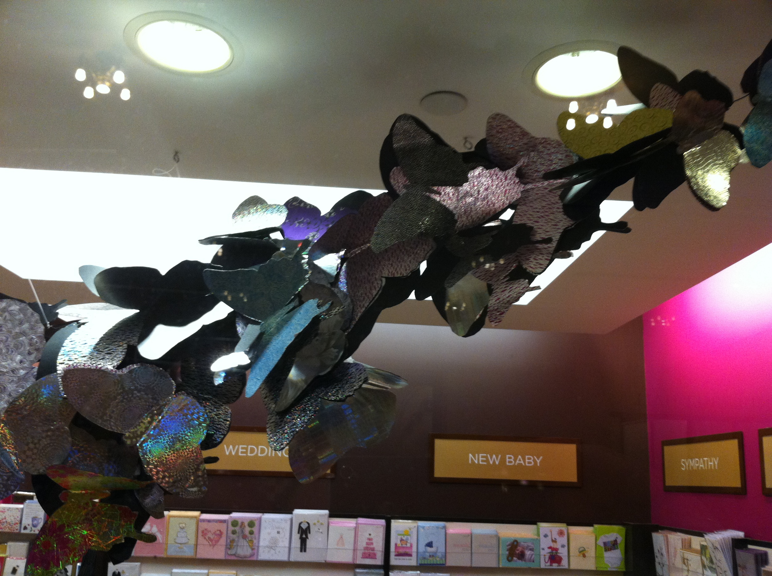 PAPYRUS STORE BUTTERFLY DISPLAY GRAND CENTRAL STATION NEW YORK CITY 4