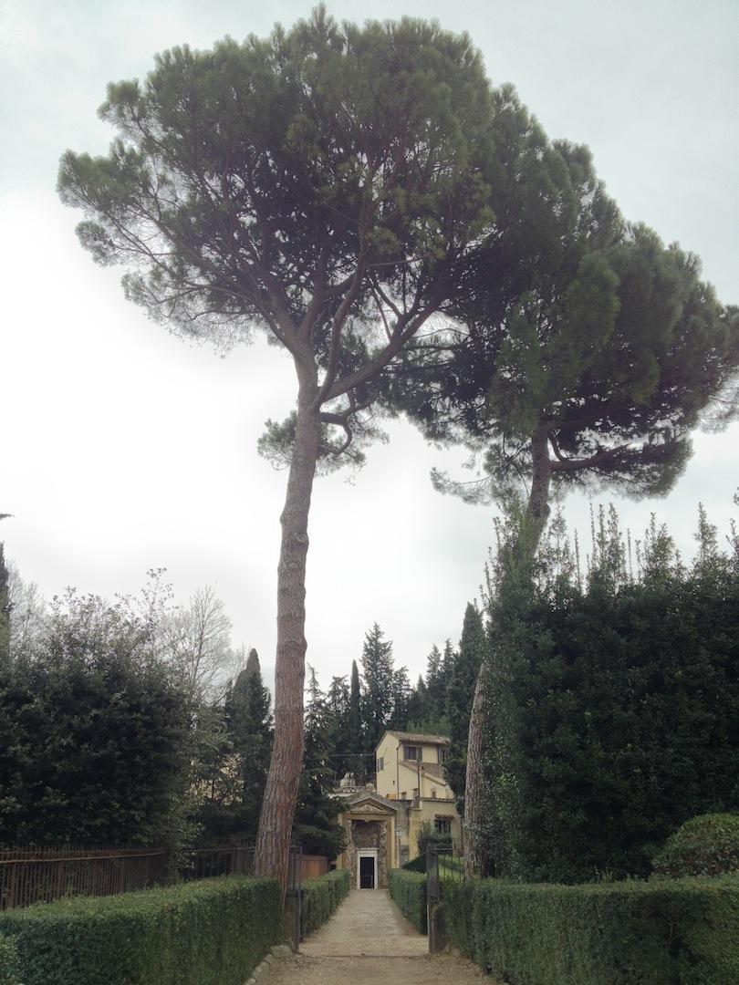 Boboli-Grotto.JPG
