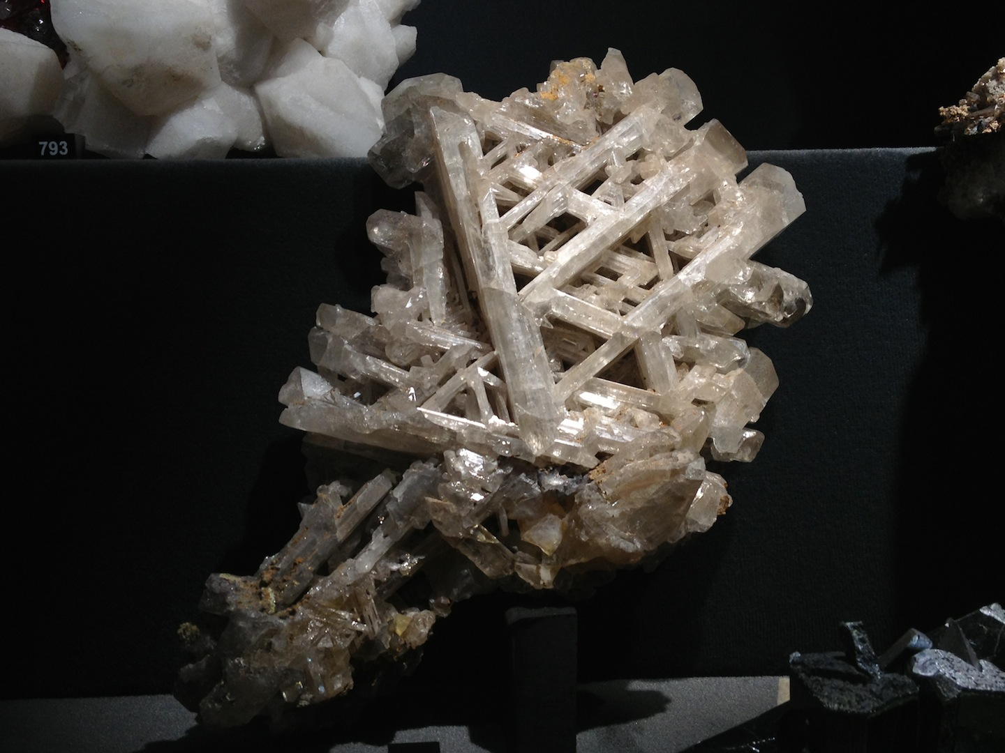 Crystal-Exhibition-La-Specola-Florence-Italy-jessewaugh.com-14.jpg