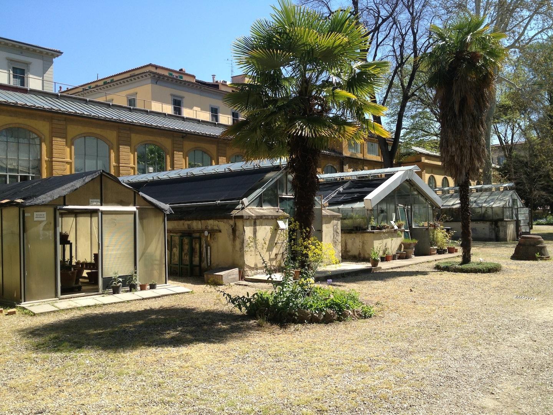 Worlds-Oldest-Botanical-Garden-Firenze-Florence-Italy-jessewaugh.com-2.jpg