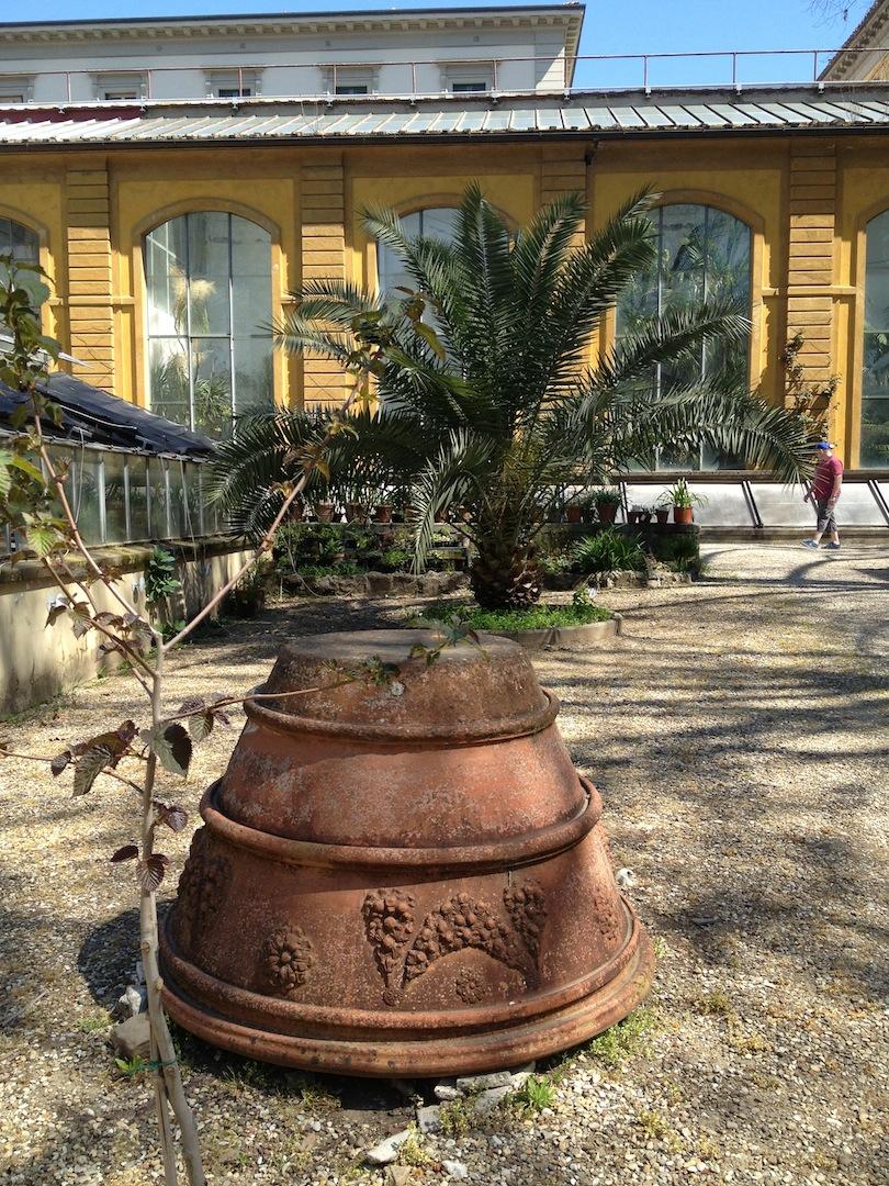 Worlds-Oldest-Botanical-Garden-Firenze-Florence-Italy-jessewaugh.com-5.jpg