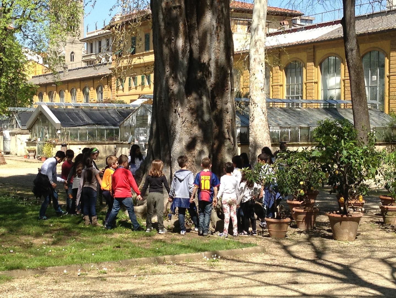 Worlds-Oldest-Botanical-Garden-Firenze-Florence-Italy-jessewaugh.com-10.jpg