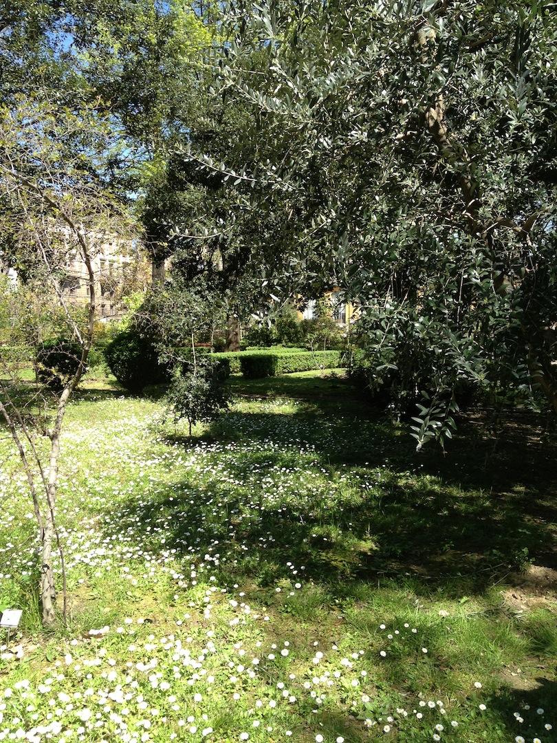 Worlds-Oldest-Botanical-Garden-Firenze-Florence-Italy-jessewaugh.com-29.jpg