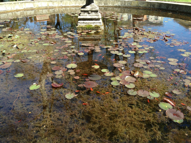 Worlds-Oldest-Botanical-Garden-Firenze-Florence-Italy-jessewaugh.com-38.jpg