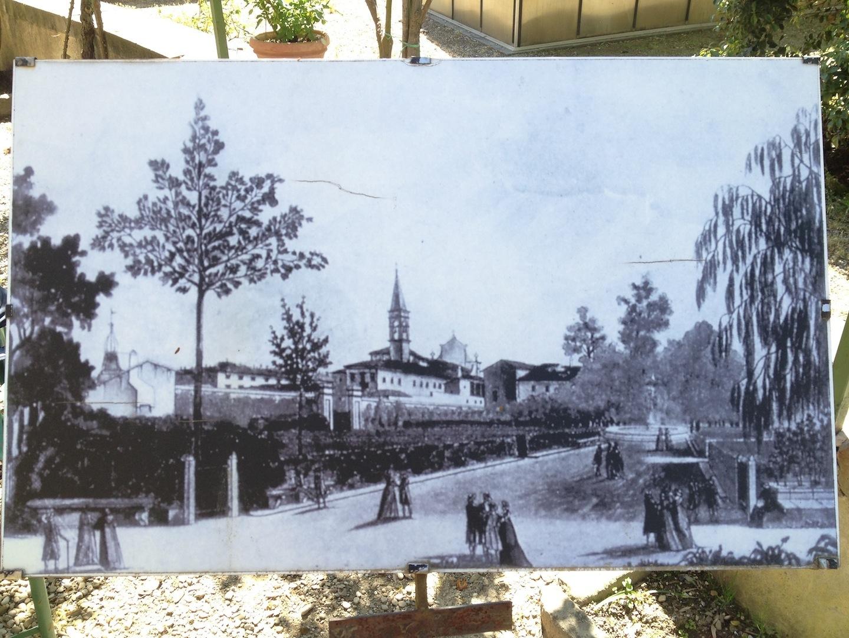 Worlds-Oldest-Botanical-Garden-Firenze-Florence-Italy-jessewaugh.com-57.jpg