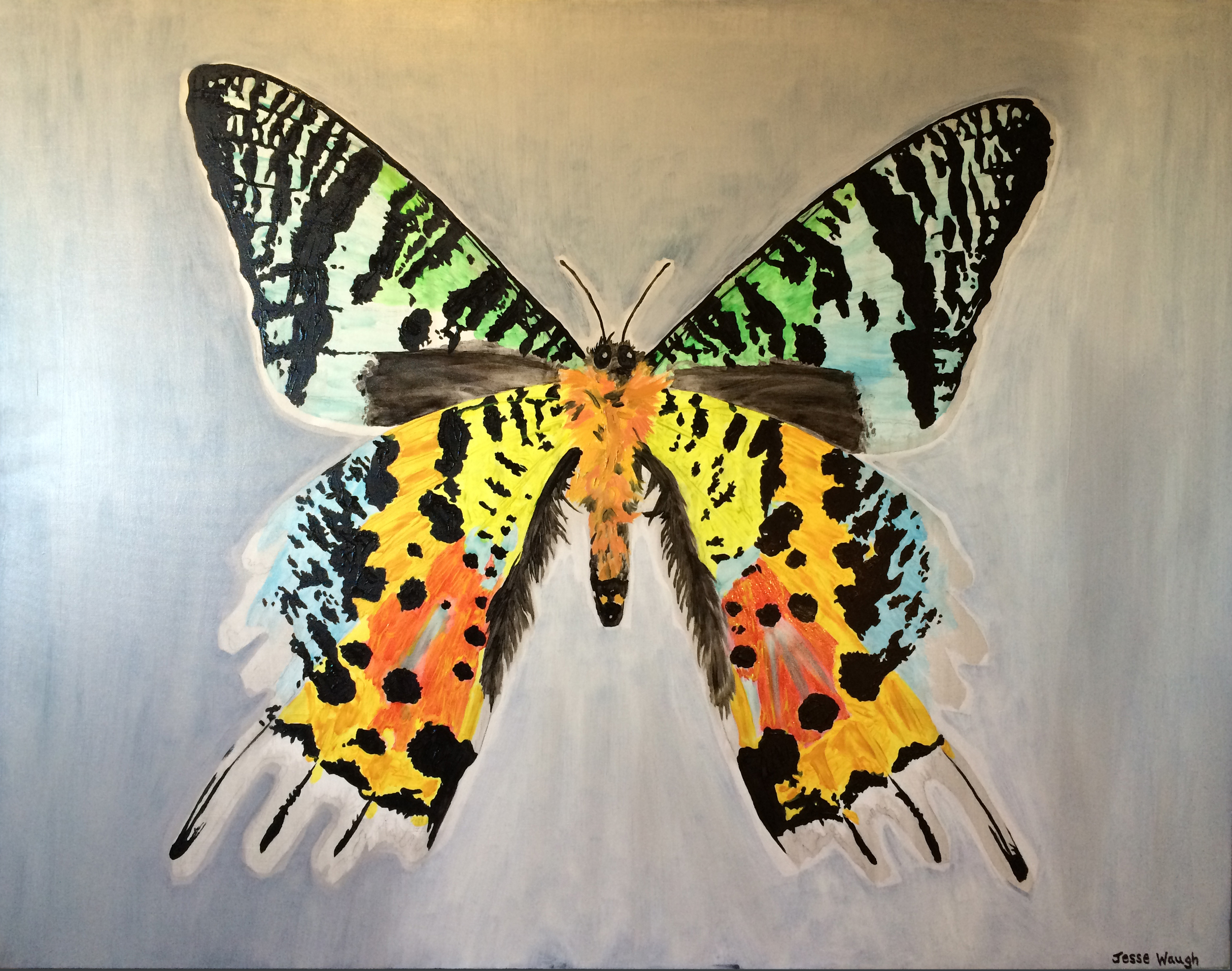 Jesse Waugh   Sunset Moth   2013 Oil on canvas