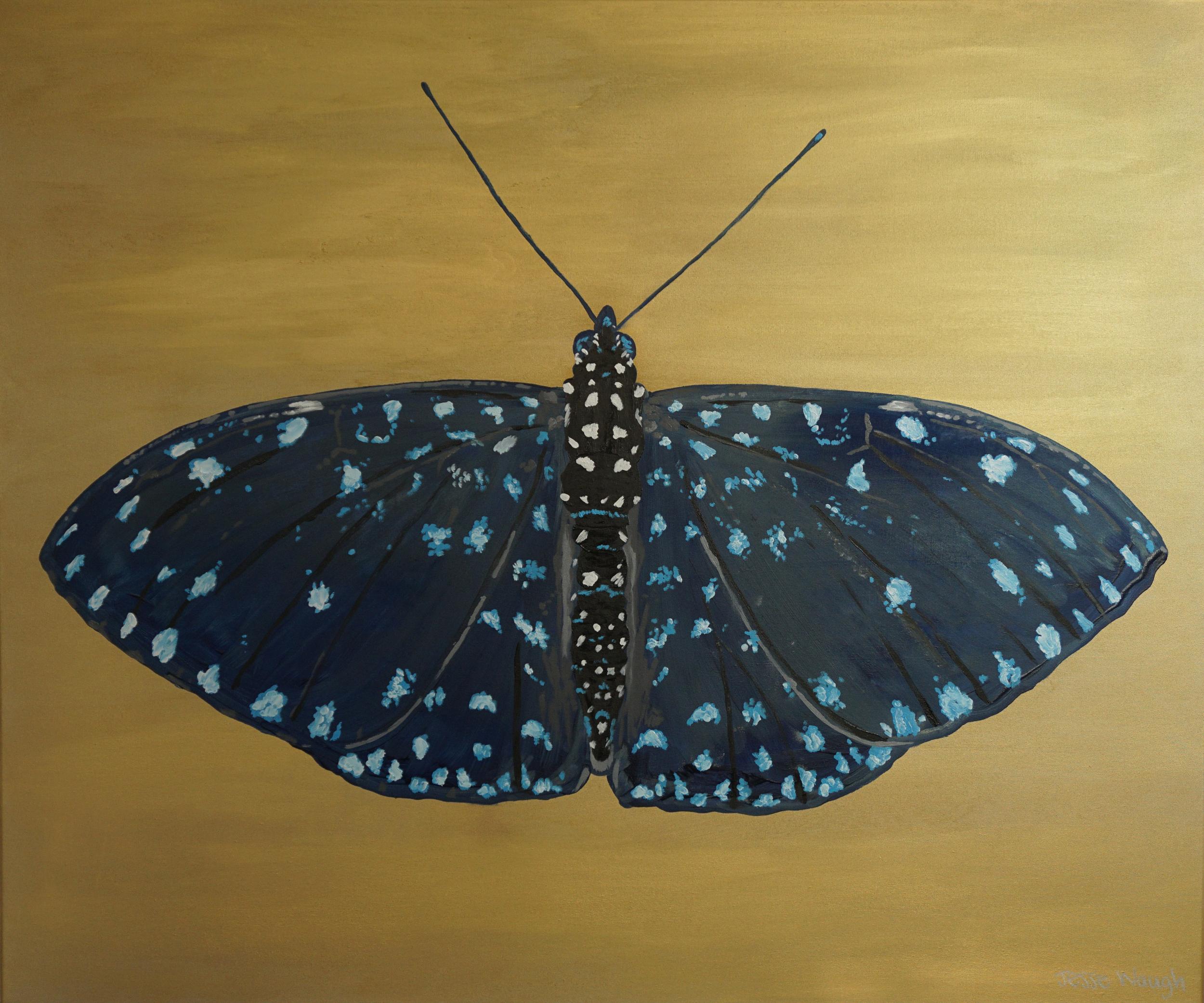 Jesse Waugh  Starry Night Cracker  (Hamadryas laodamia)   Butterfly 2 2014 Oil on canvas 100 X 120 cm