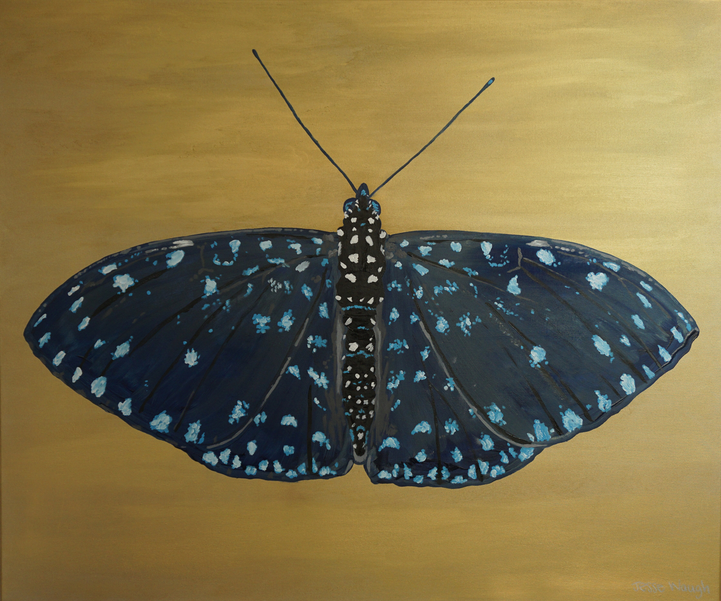 Jesse Waugh   Starry Night Cracker  (Hamadryas laodamia)    Butterfly 2    2014    Oil on canvas   100 X 120 cm