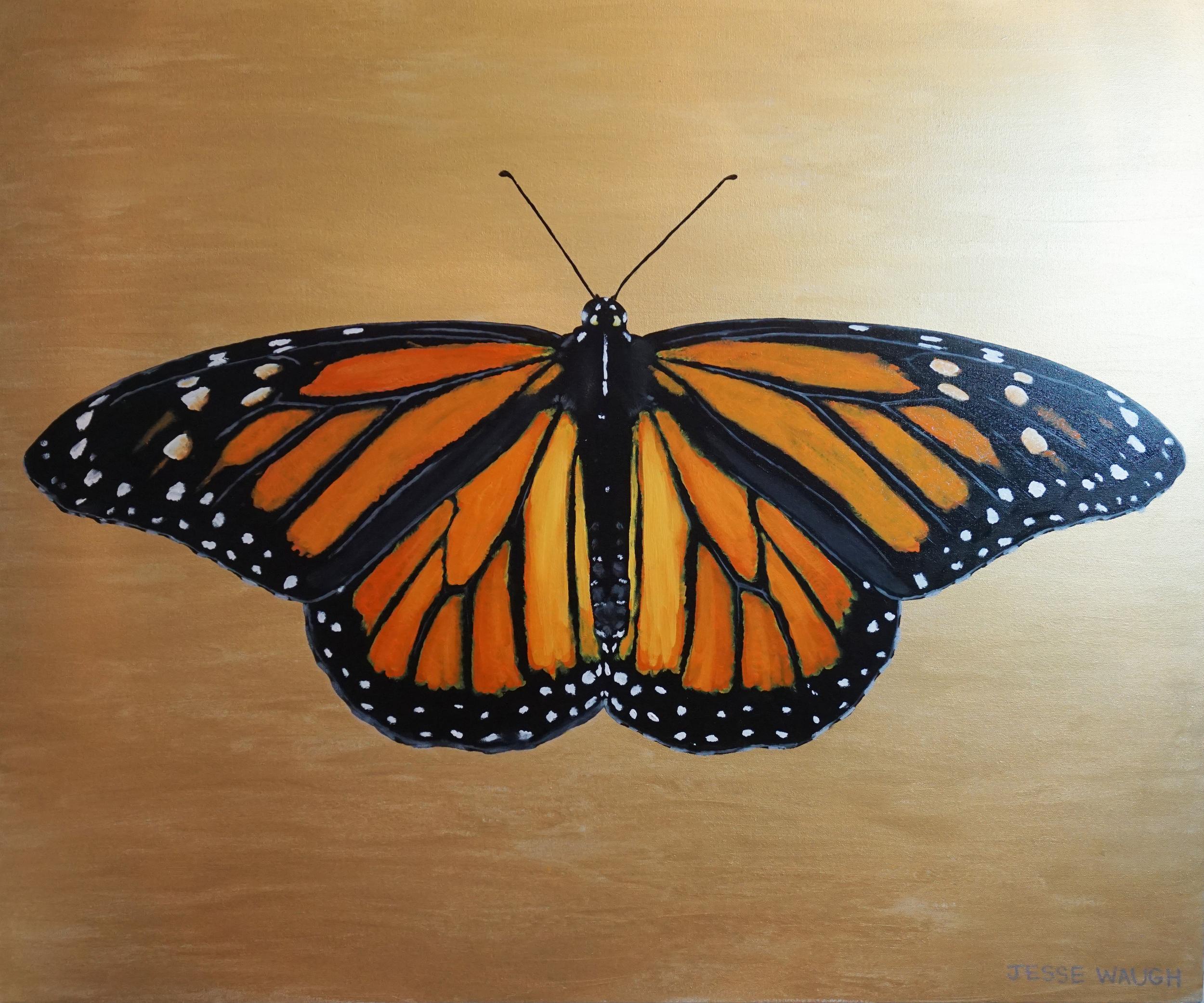 Jesse Waugh   Monarch  Danaus plexippus  Butterfly 3 2014 Oil on canvas