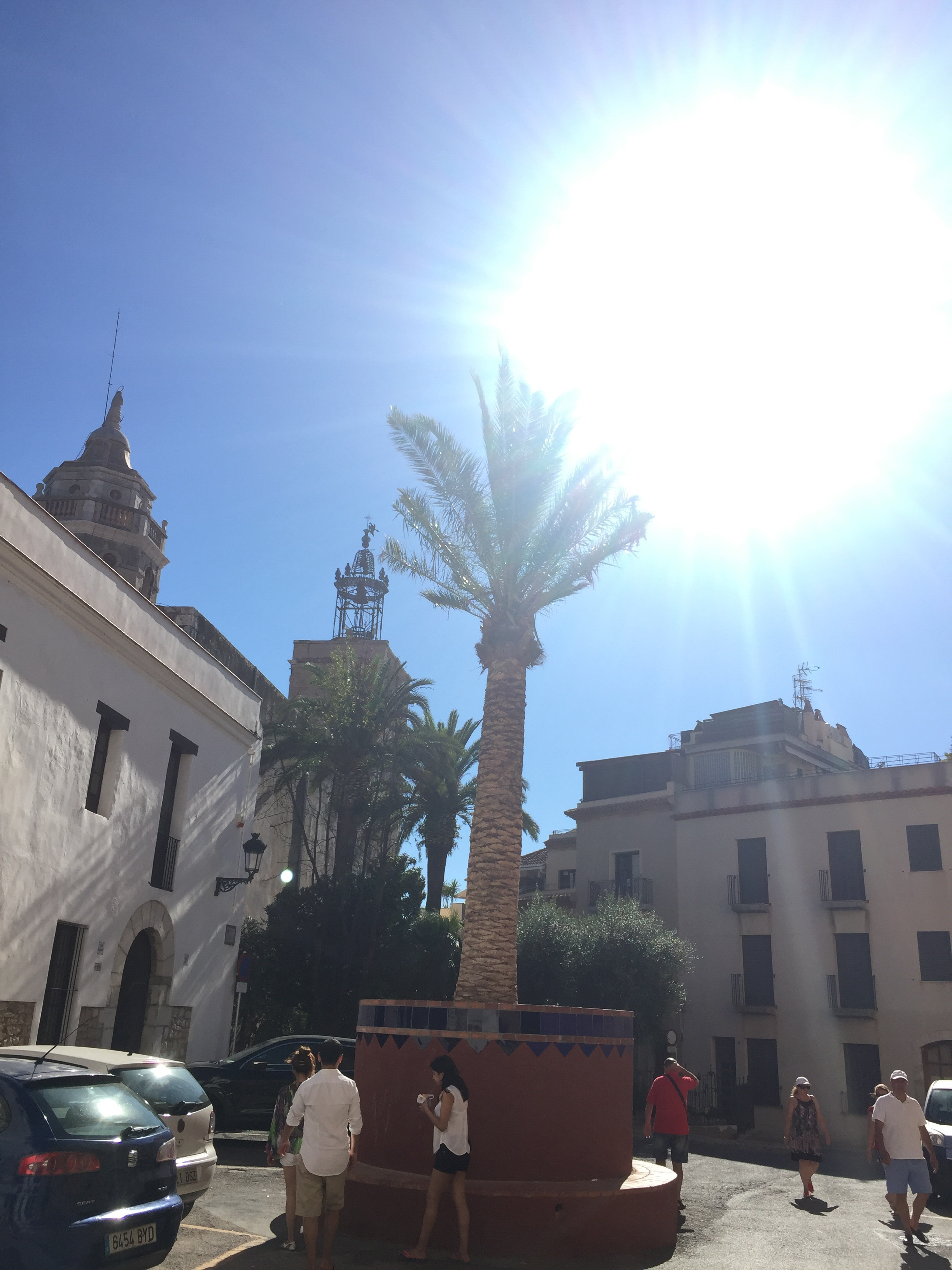New Maricel Palm in Sitges, Spain