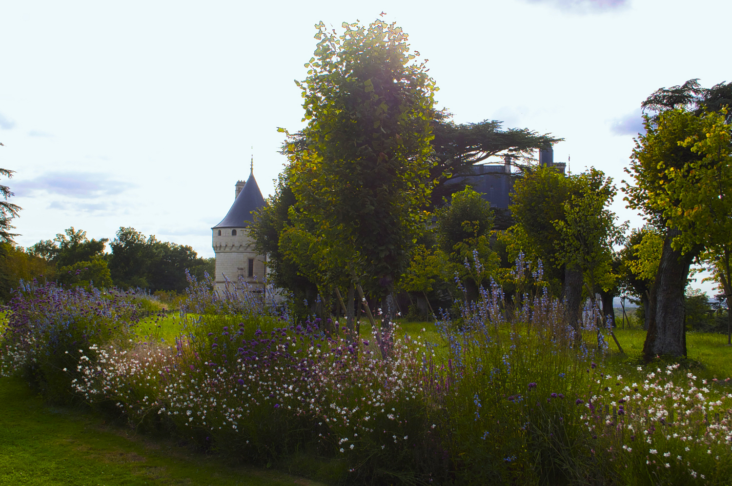 Flower borders decorate the enormous expanse of lawn around the château