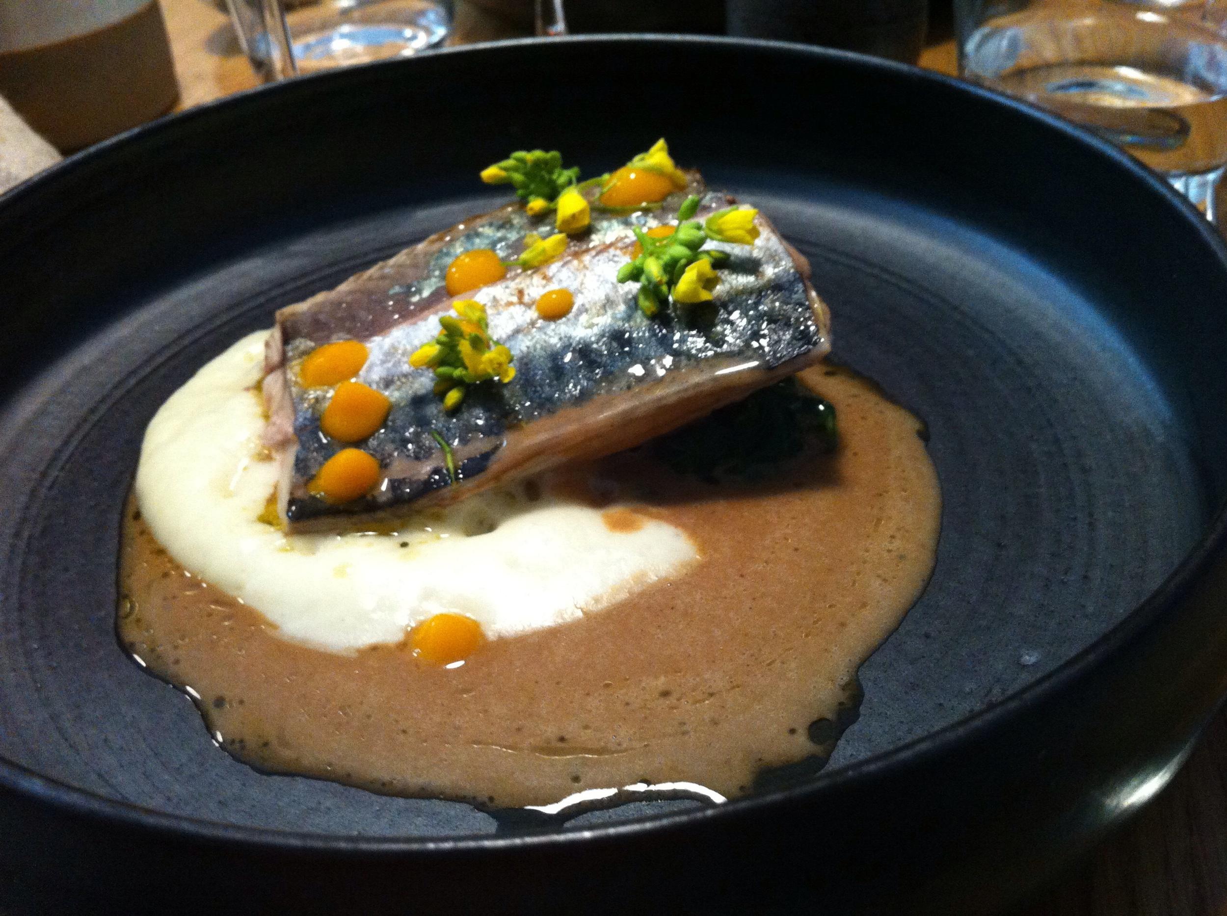 Merlu fish with potato sauce and gravy
