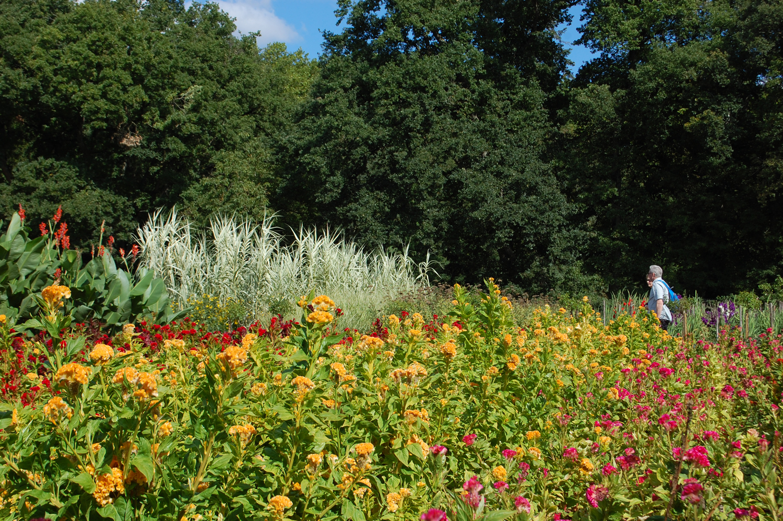 Chenonceau flower garden