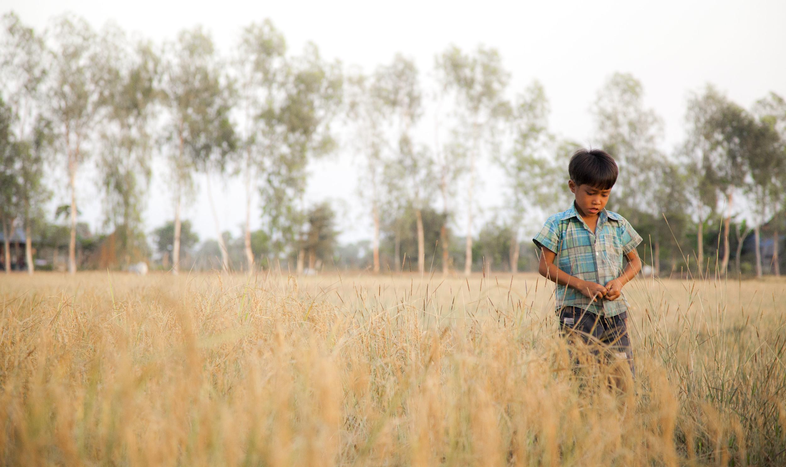 boy in field.jpg