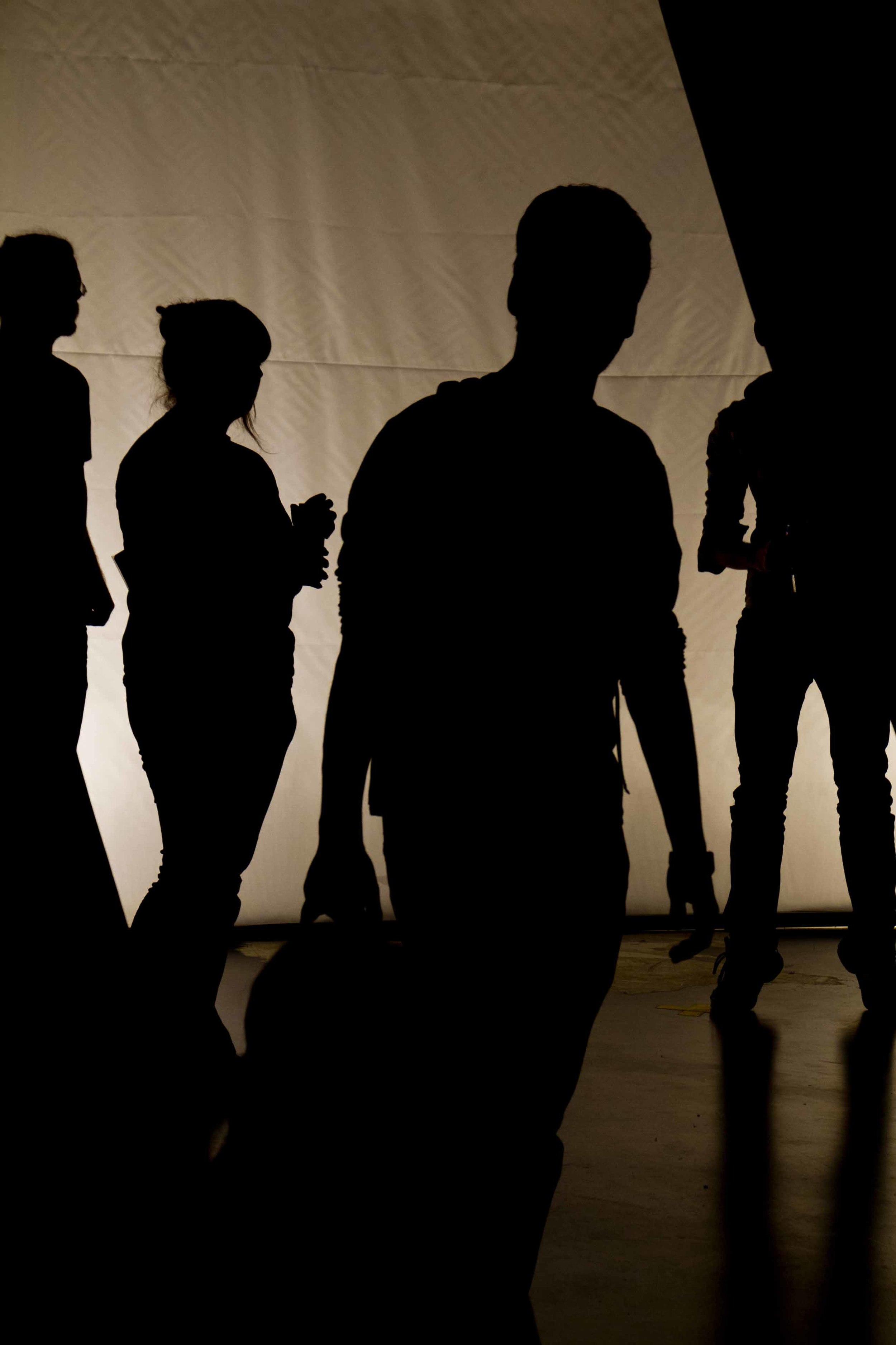 shadowlab_7.jpg