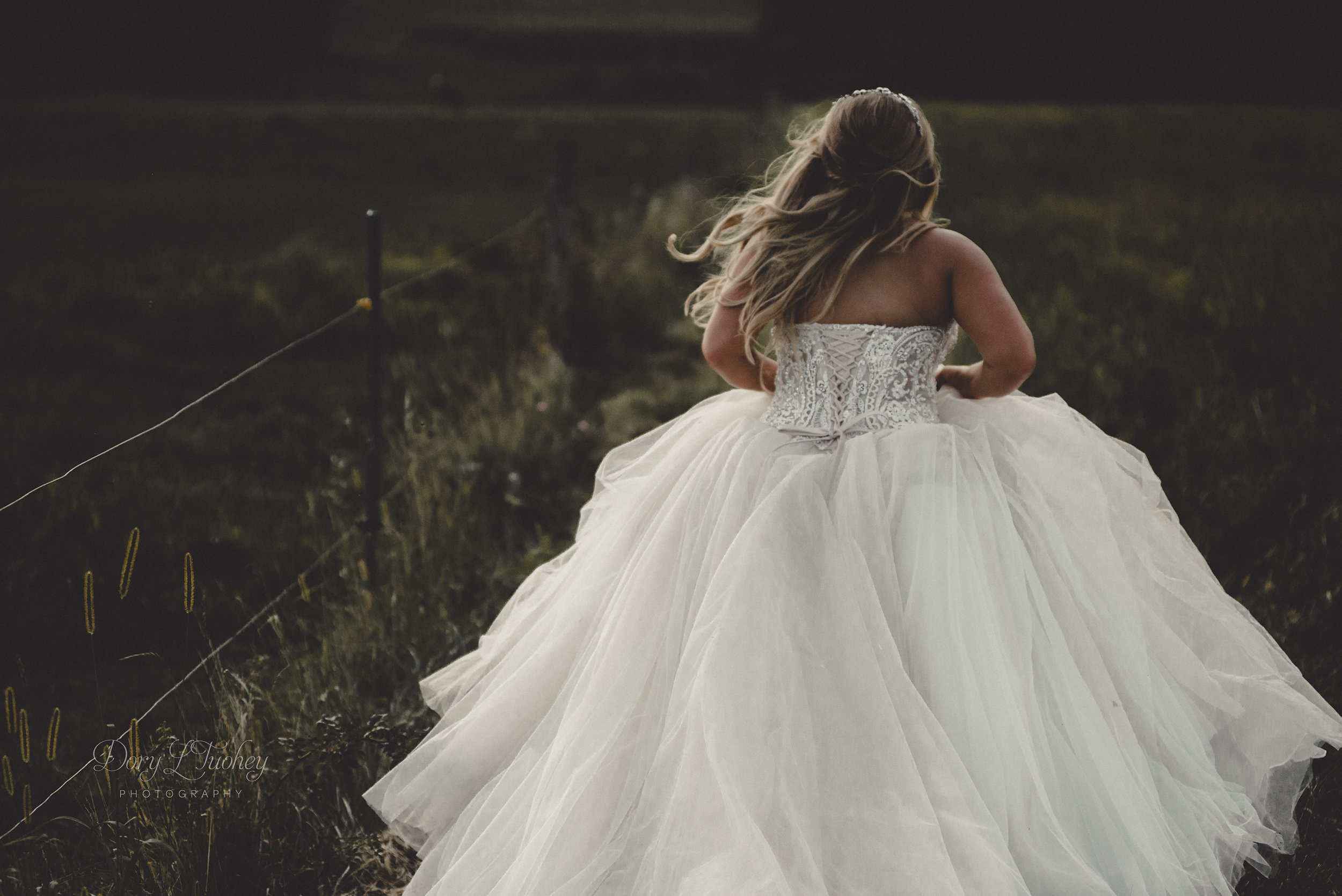 Dory_wedding_oak_hill_galena_farm_horses_field_bride_tulle_photographer_01.jpg
