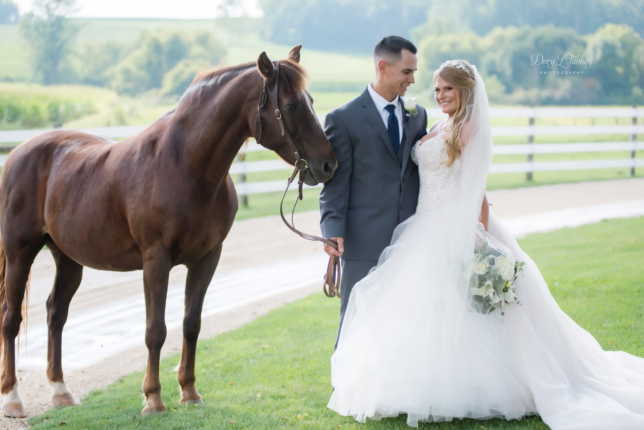 Dory_wedding_farm_country_equestrian_horses_bride_groom_apple_valley_03.jpg