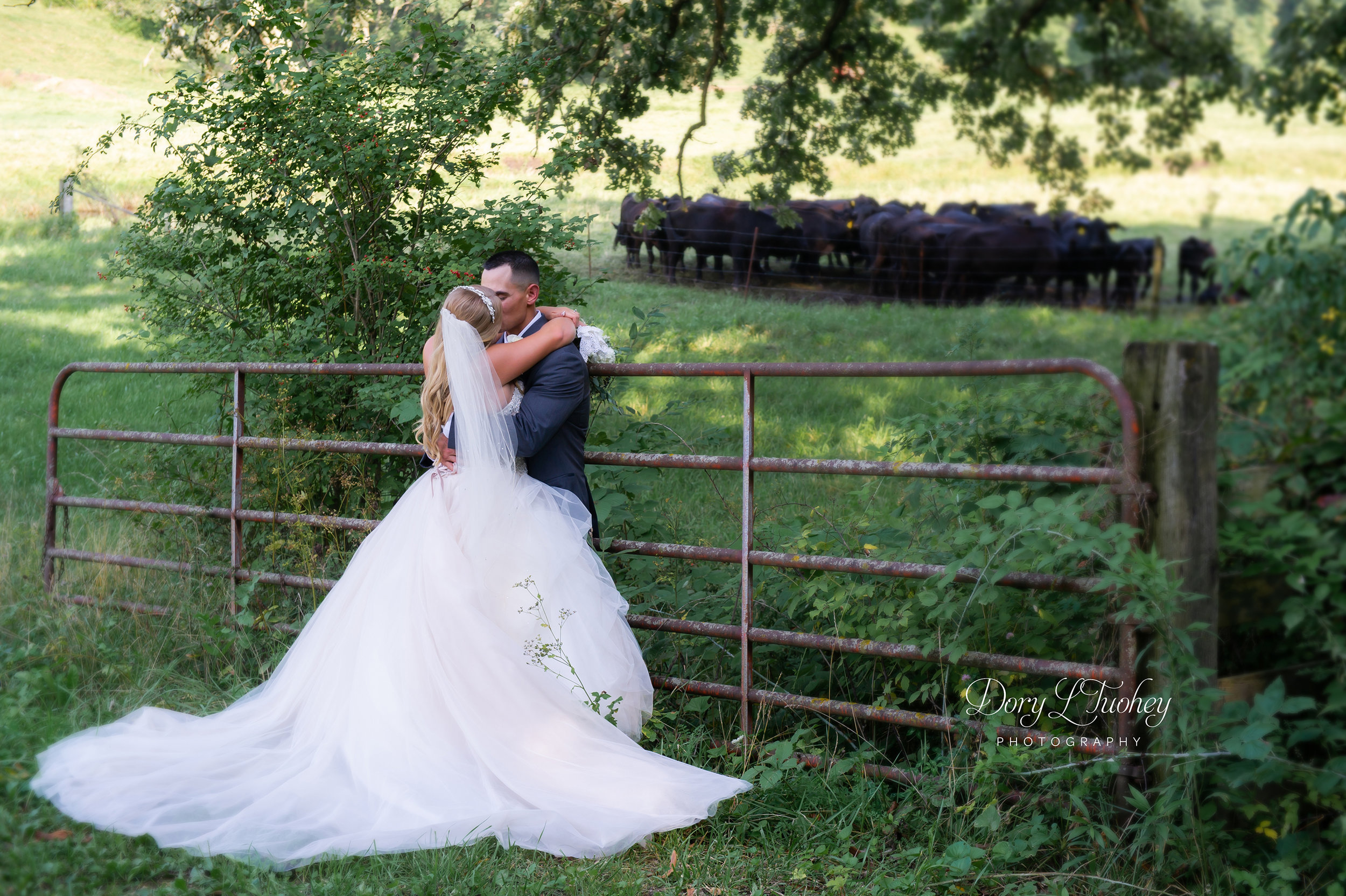 Dory_wedding_farm_country_equestrian_horses_bride_groom_apple_valley_05.jpg