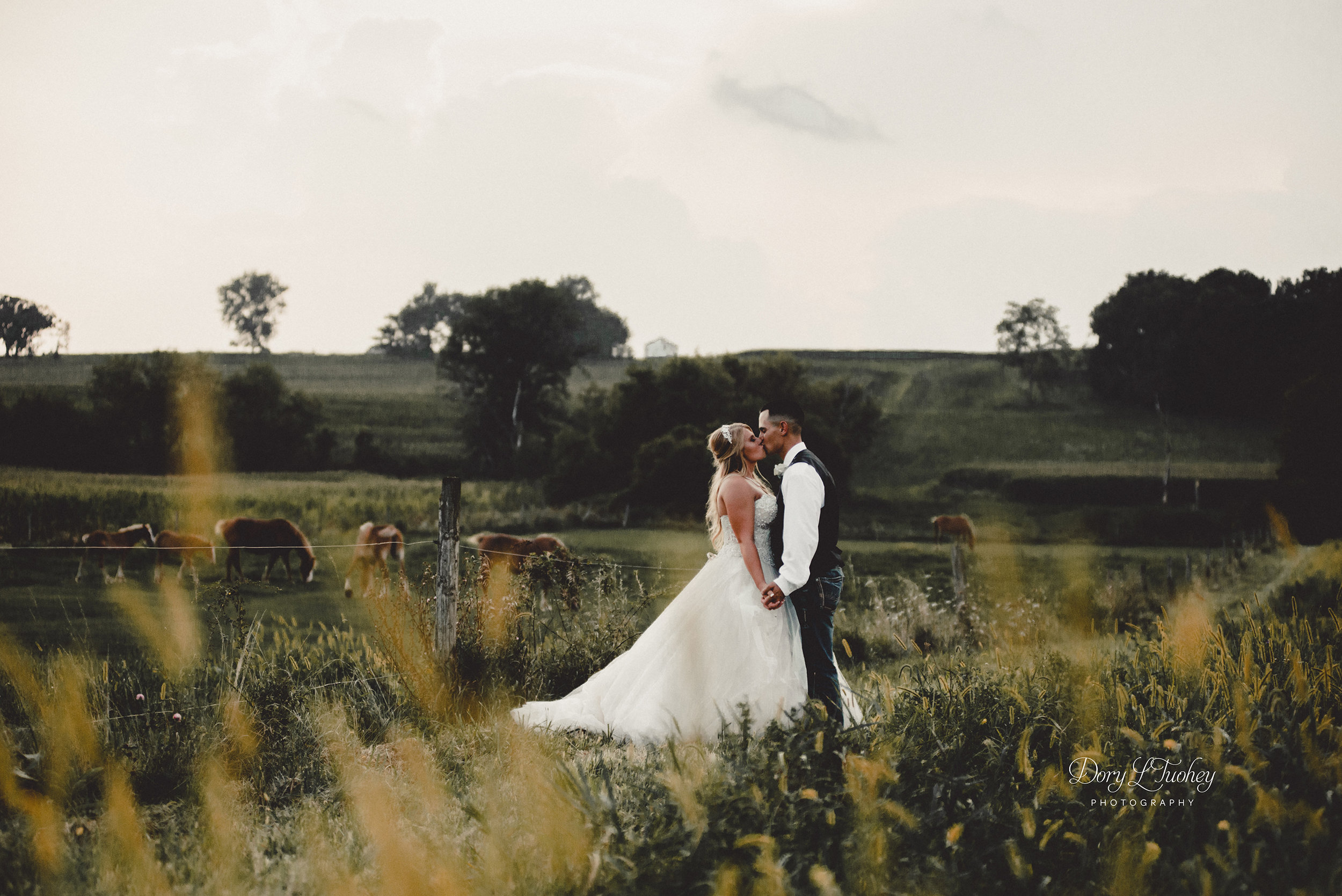 Dory_wedding_farm_country_equestrian_horses_bride_groom_apple_valley_15.jpg