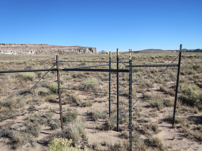 The gate, wire intact.