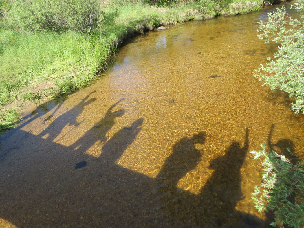 Get a group of artists together, and they'll find something interesting like shadows in the creek. They'll also goof off when prompted for a photo.