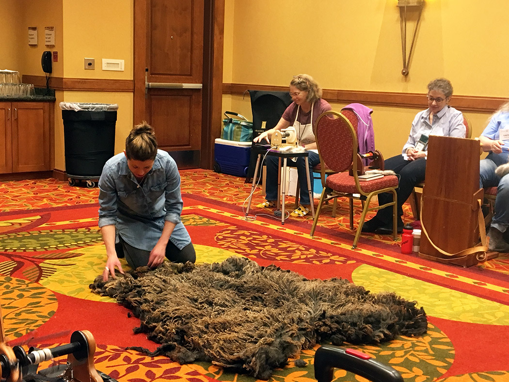 Kate Larson rolls out a Shetland fleece (oh boy do I hope I'm right—sometimes I doubt my notes… maybe it is my handwriting)