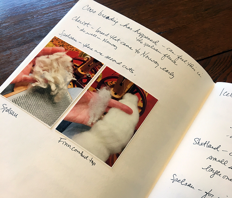 Rebecca's notebook