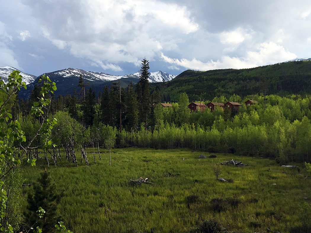 Meadow behind the cabins
