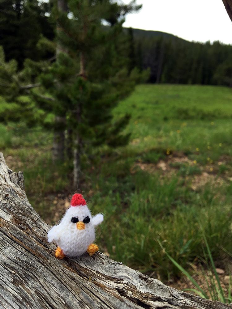 This way!! Wilderness chicken. #mochimochiland