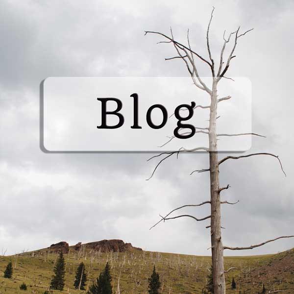 blog_button.jpg