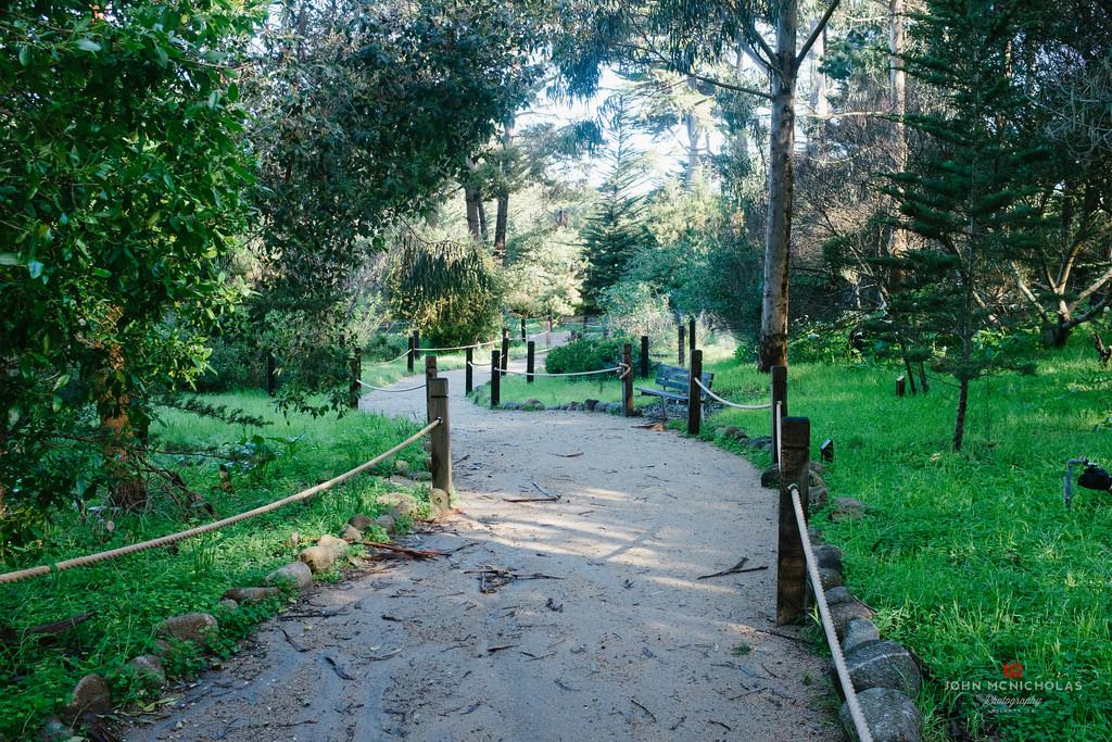 Monarch Grove Sanctuary_25435176180_l.jpg