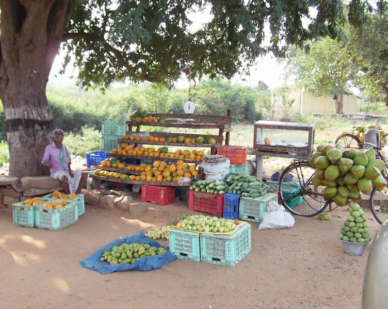 roadside fruit shop.jpg