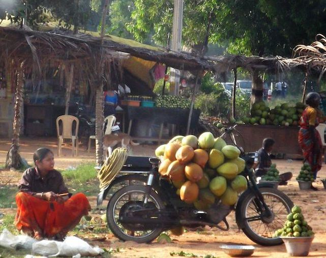 coconut seller.jpg