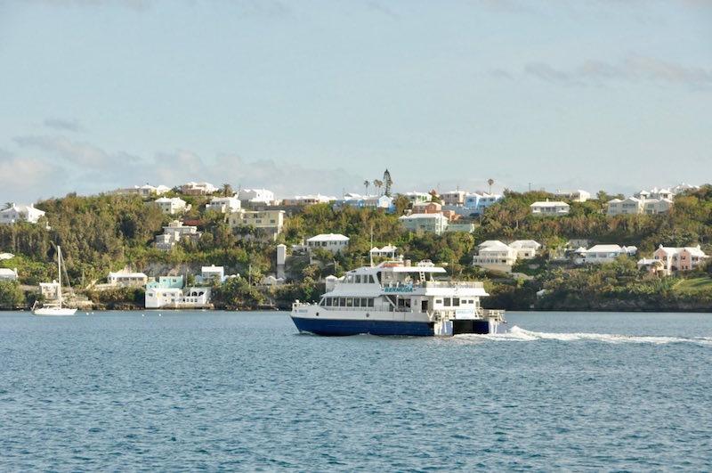 Bermuda - 302.jpg